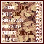 Give Thanks – Psalm 107:1 – #113