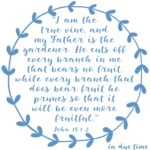 John 15:1-2 Vine + Branches #190