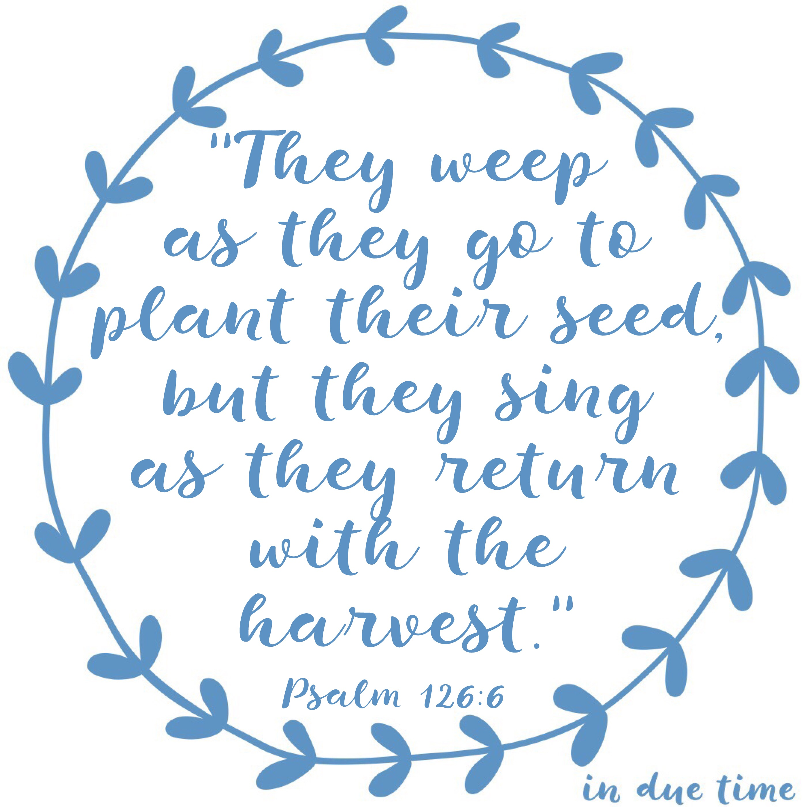 They Weep as they go to plant their seed - in due time blog