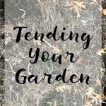 Tending Your Garden