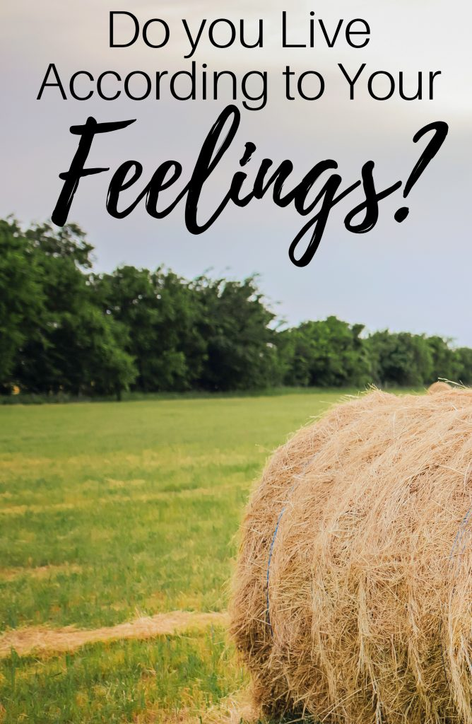 Do you live according to your feelings in due time blog2