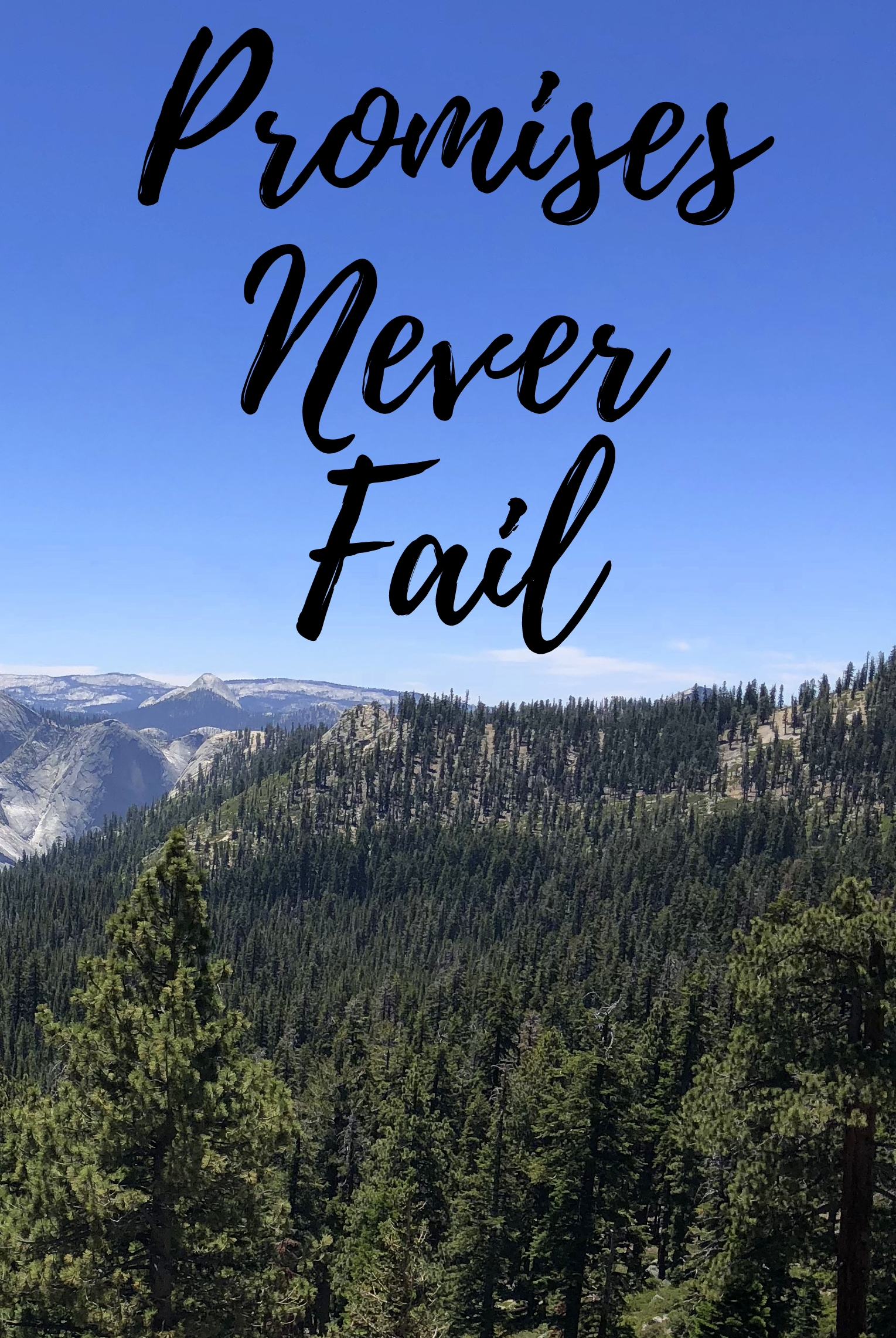 in due time blog promises never fail bethel church