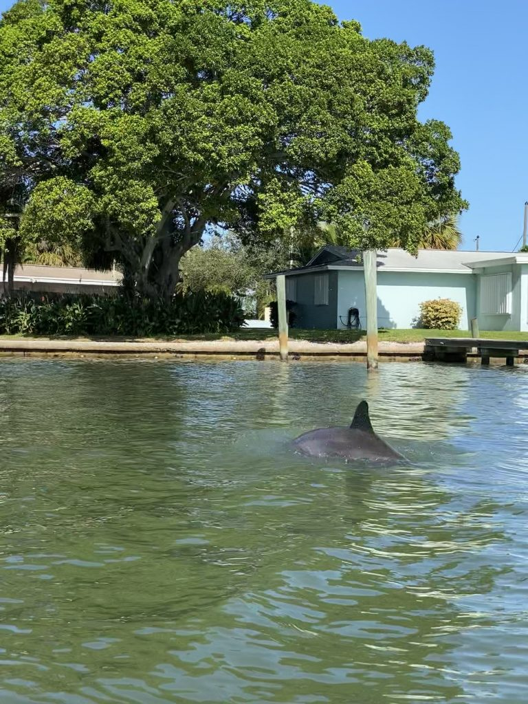 Indian Beach Florida Trip Recap In Due Time Blog15