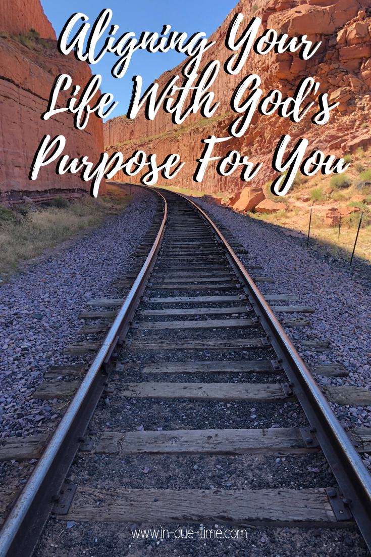 Aligning Your Life for God's purpose for you in due time blog