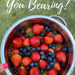 What Fruit Are You Bearing?