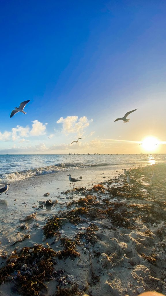 Florida Keys clarence higgs memorial beach Vacation In Due Time Blog1