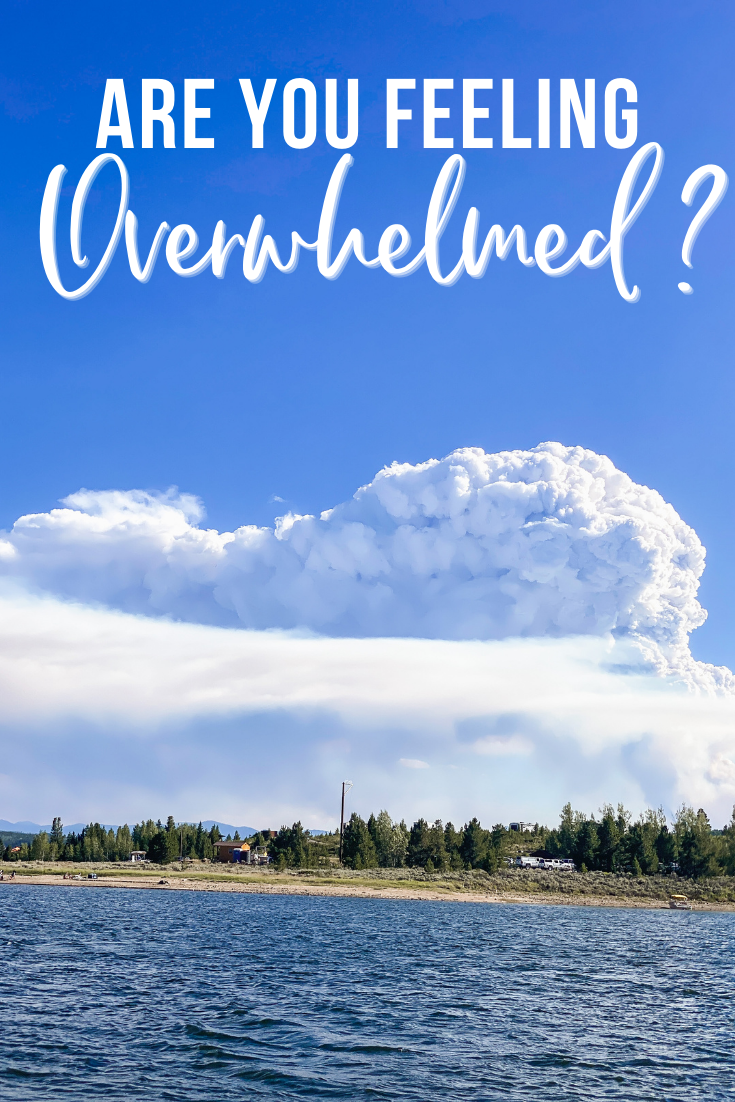 In Due Time Blog Are you feeling overwhelmed